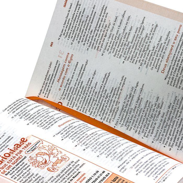 A Bíblia das Descobertas  - Universo Bíblico Rs