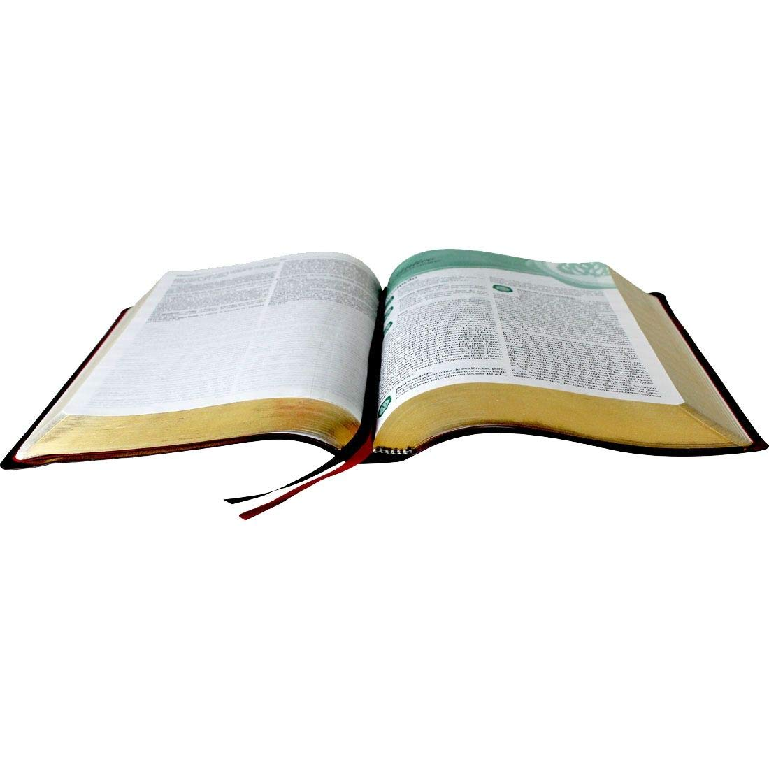Bíblia de Estudo de Genebra - Couro bonded Vinho: Almeida Revista e Atualizada (ARA)  - Universo Bíblico Rs