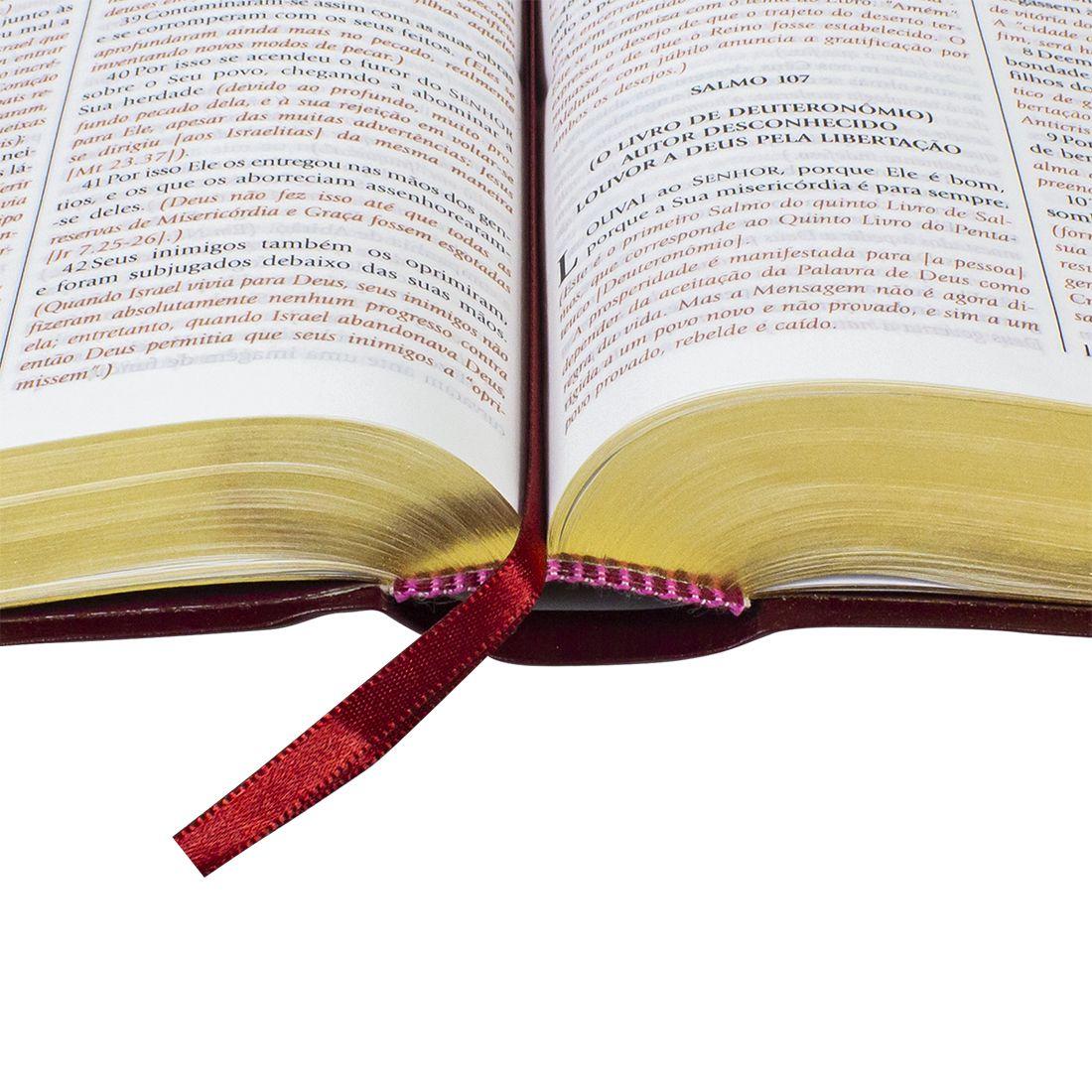 Bíblia de Estudo do Expositor - Capa couro bounded vinho: Nova Versão Textual Expositora  - Universo Bíblico Rs