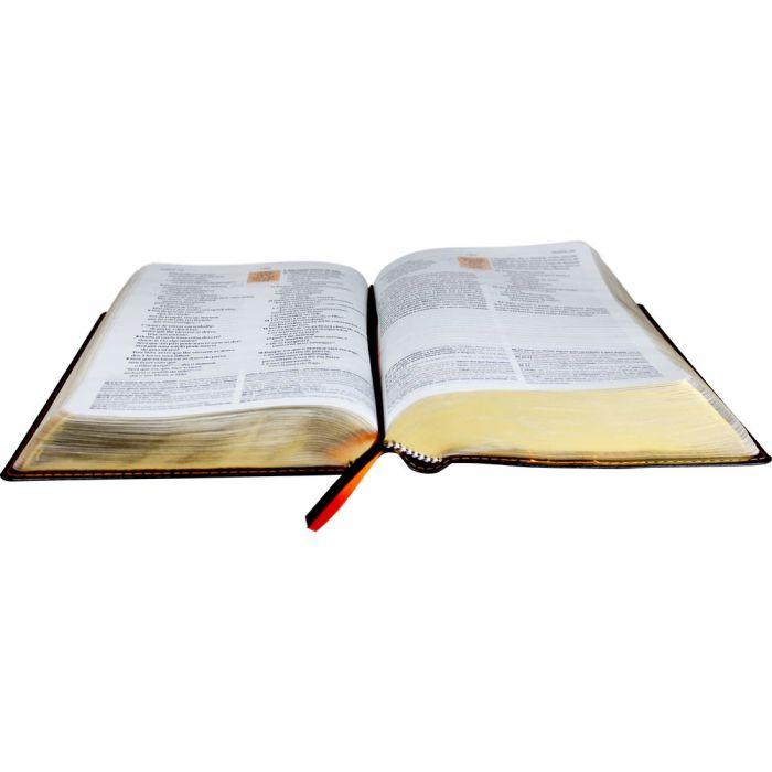 Bíblia de Estudo NAA com Índice  - Universo Bíblico Rs