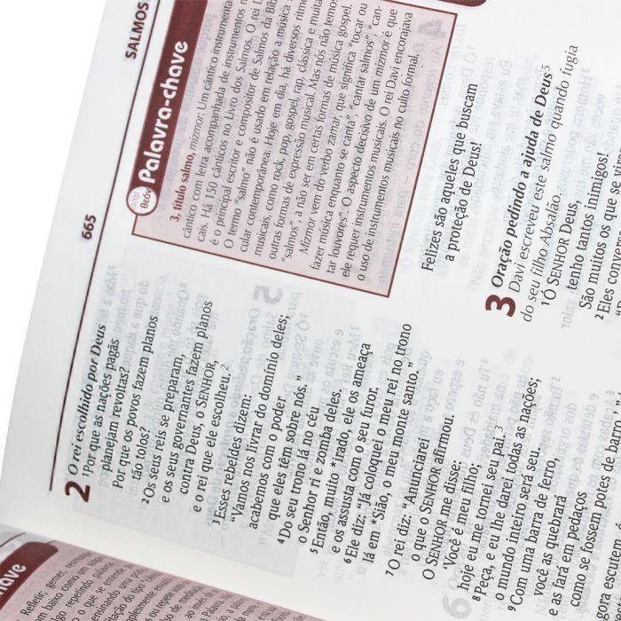 Bíblia de Estudo Plenitude para Jovens  - Universo Bíblico Rs