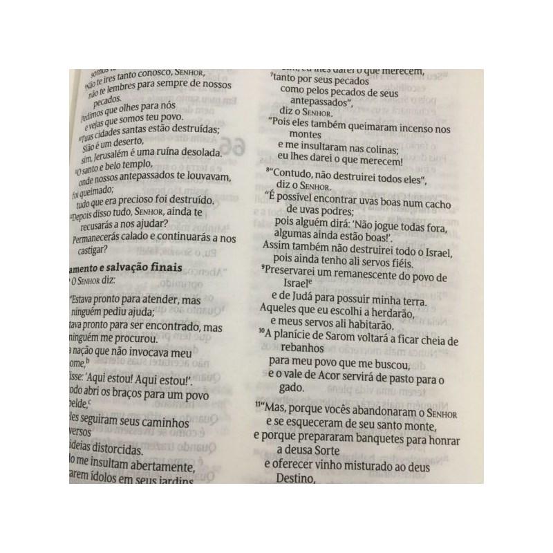Bíblia Leão de Judá   NVT   Letra Normal   Capa Dura Vermelho  - Universo Bíblico Rs