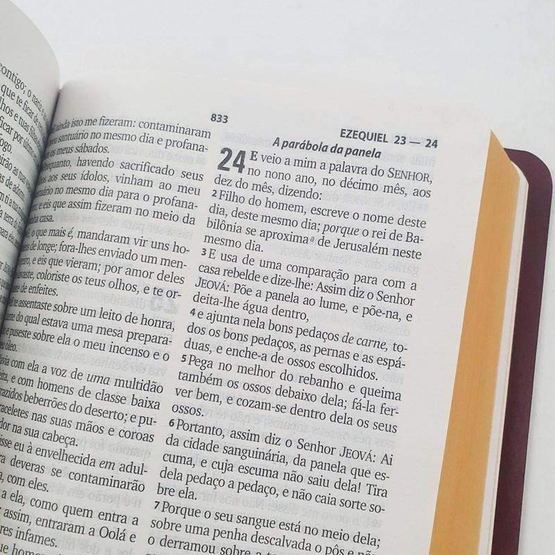 Bíblia Sagrada   ARC   Letra Grande   Harpa Cristã   Capa Rosa  - Universo Bíblico Rs