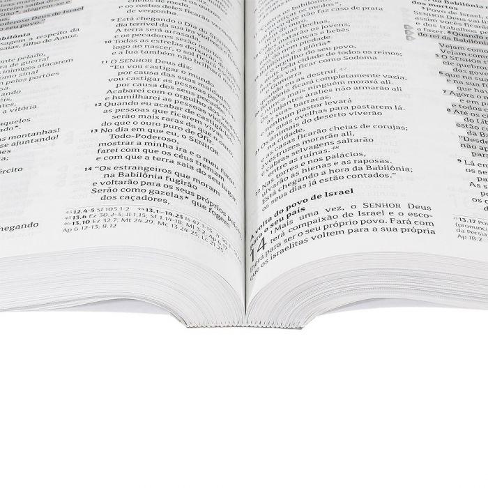 Bíblia Sagrada Celebrando a Recuperação  - Universo Bíblico Rs