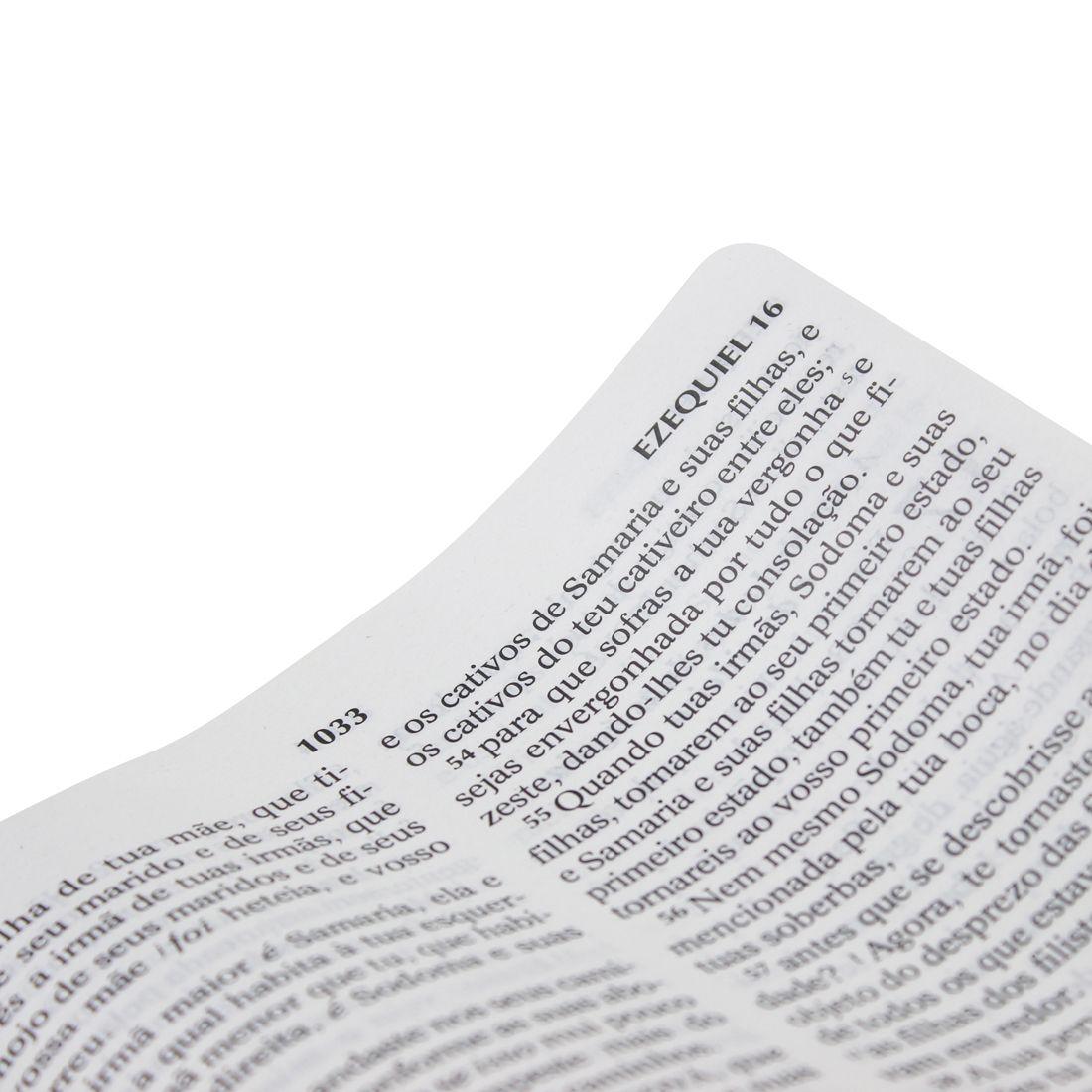 Bíblia Sagrada com Harpa Cristã - Letra Gigante  - Universo Bíblico Rs