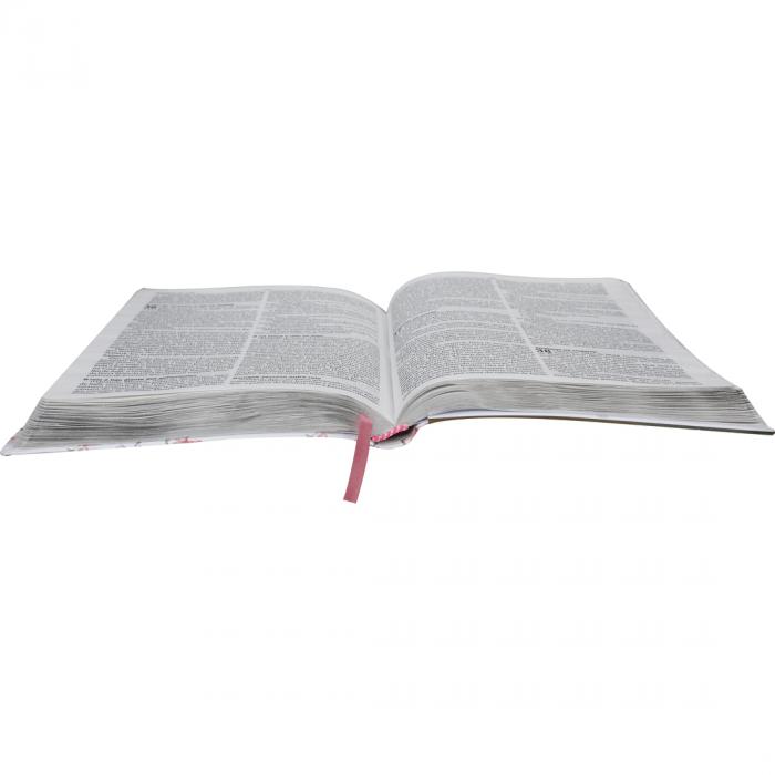 Bíblia Sagrada entre Meninas e Deus  - Universo Bíblico Rs