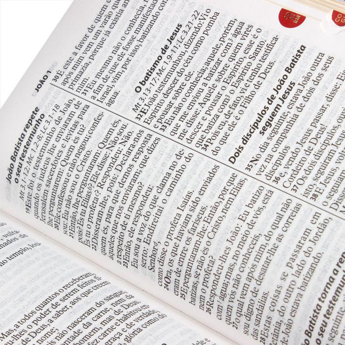 Bíblia Sagrada Letra Gigante / Marrom - (ARA)  - Universo Bíblico Rs