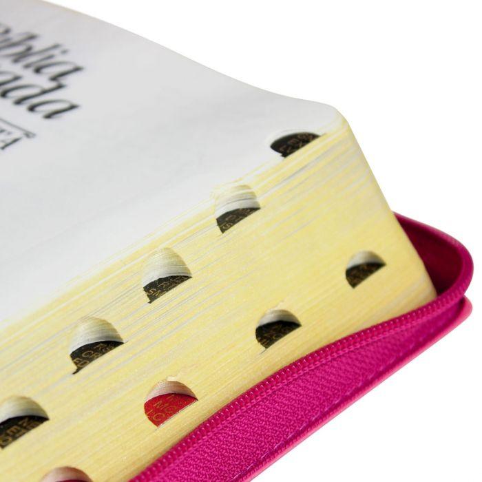 Bíblia Sagrada Letra Gigante, Edição com Letras Vermelhas com Harpa Cristã  - Universo Bíblico Rs