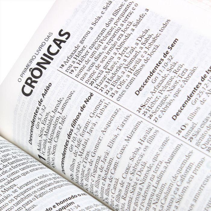 Bíblia Sagrada Letra Grande / Rosa Claro - ( ARA  - Universo Bíblico Rs