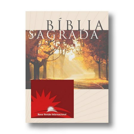Bíblia Sagrada | NVI | Letra Média | Brochura | Estampa Unica