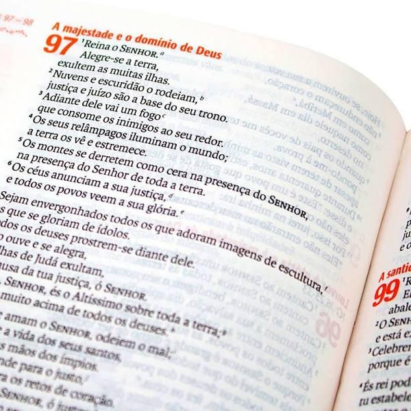 Bíblia Sagrada Verdadeira Identidade - NAA  - Universo Bíblico Rs