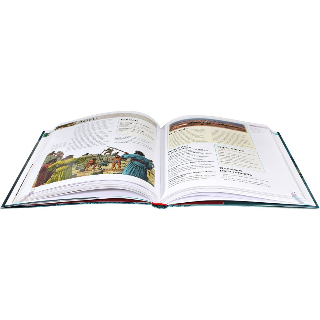 Manual essencial da Bíblia: Edição Acadêmica  - Universo Bíblico Rs