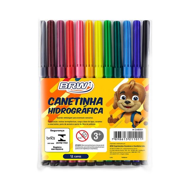 Canetinha Hidrográfica 12 cores