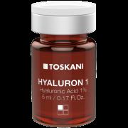 Hyaluron 1 - frasco-ampola com 5 ml