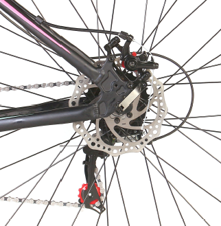 Bicicleta Status Big Evolution 3.0 Aro 29 21V Disk Brake Grafite/Magenta-Verde