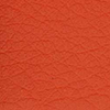 833401 - Coral