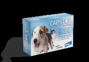 Capstar - AntiPulgas para Cães e Gatos - 1 comprimido - 11,4mg