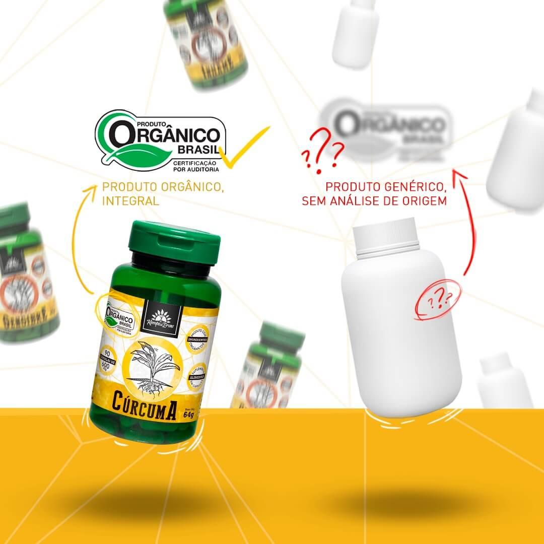 Kit Cápsulas de Cúrcuma orgânica (3 potes)