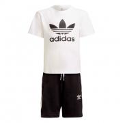 Conjunto Adidas Básico