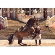 Livro Escola Portuguesa D'arte Equestre