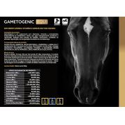 Gametogenic Equi