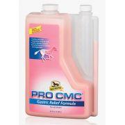Pro CMC 1,9 Lt - Tamponante e Cálcio