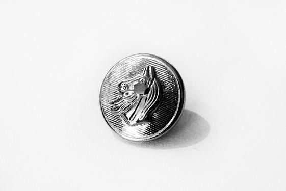 Botão com Cara de Cavalo -  1,5cm