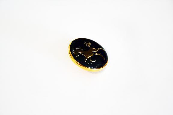 Botão com Cavalo Dourado