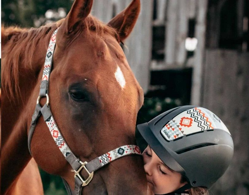 Cabresto de Nylon para Cavalo Weaver- 35-6781- P22