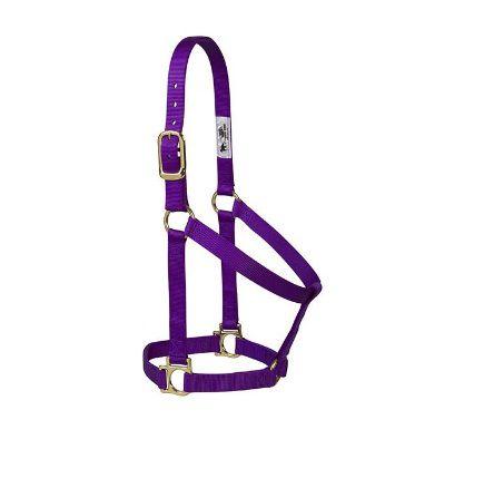 Cabresto de Nylon para Cavalo Weaver Roxo-35-7405-PU