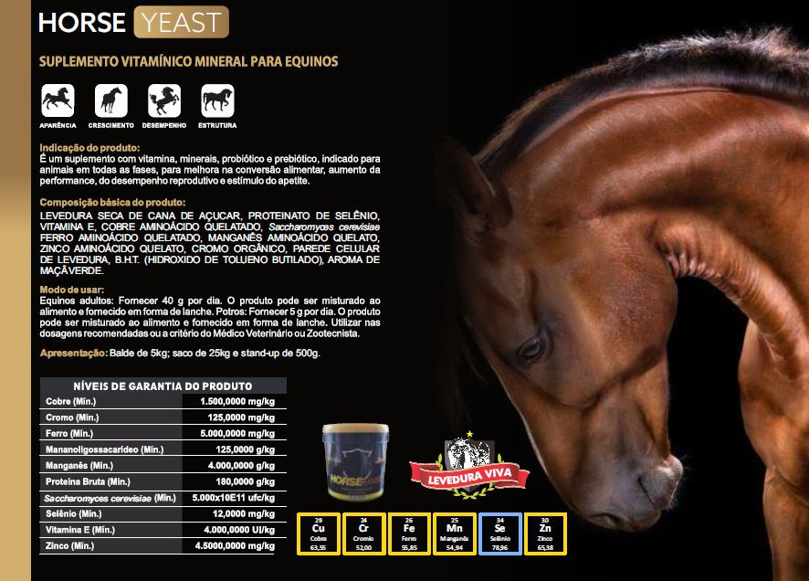 Horse-Yeast