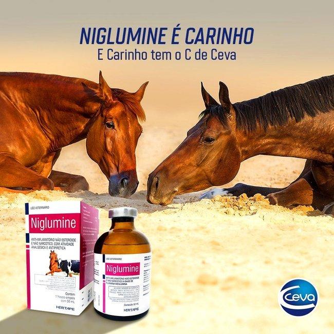 Niglumine 50ml - Ceva