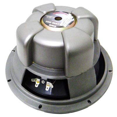 Subwoofer automotivo hurricane class pro alto falante som audio carro tunning (cp10)