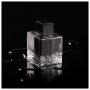 Seduction in Black Antonio Banderas Eau de Toilette - Perfume Masculino 100ml