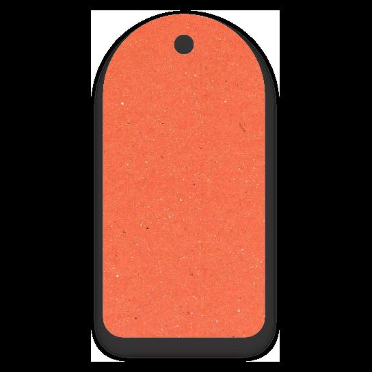 Tag Etiquetas Ecológicas - Laranja - CS300