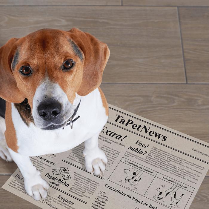 Tapet Jornal Ecológico para Pets