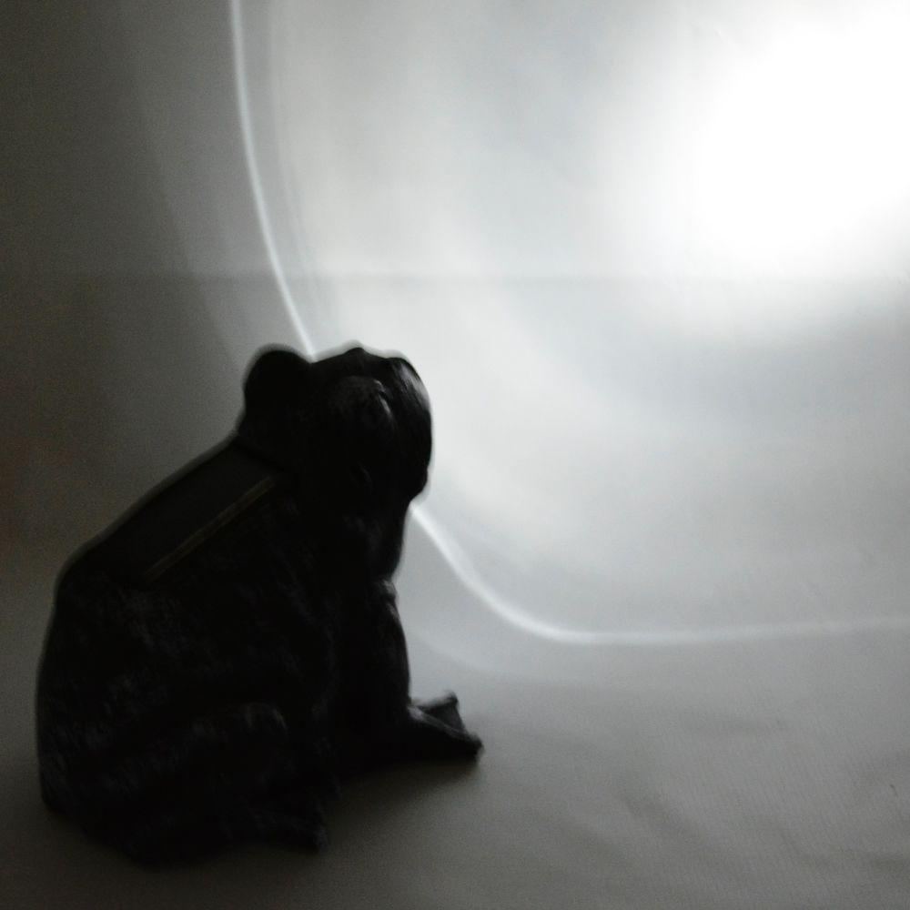 Luminária Solar Jardim 1 peça Resina Sapo CBRN13234