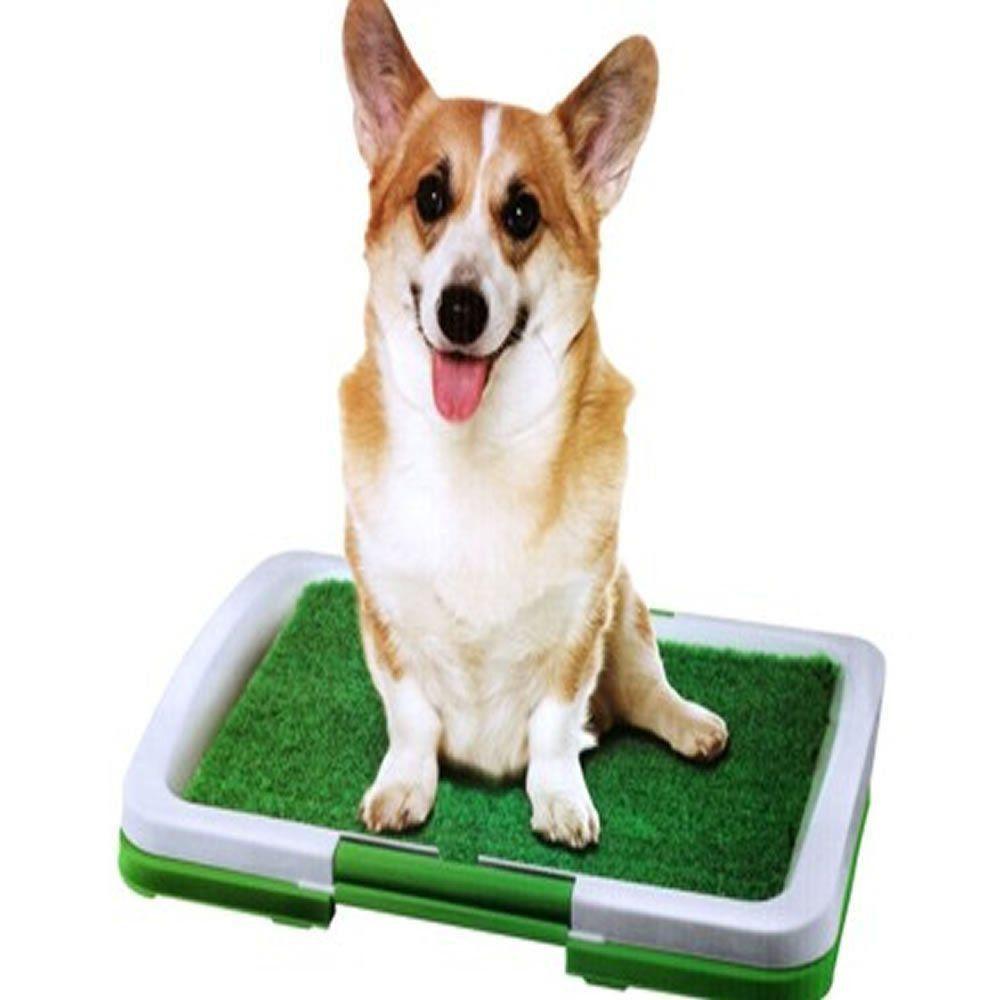 Sanitario para cães Puppy Potty Pad grama artificial CBR01119