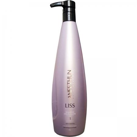 Aneethun Shampoo Liss Disciplinante 1 Litro