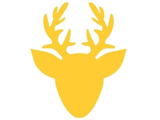 Placa Amarela