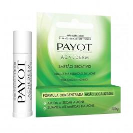 Bastão Secativo Acnederm Payot 4,5g