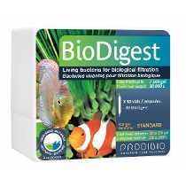 Prodibio Bio Digest - 06 Ampolas