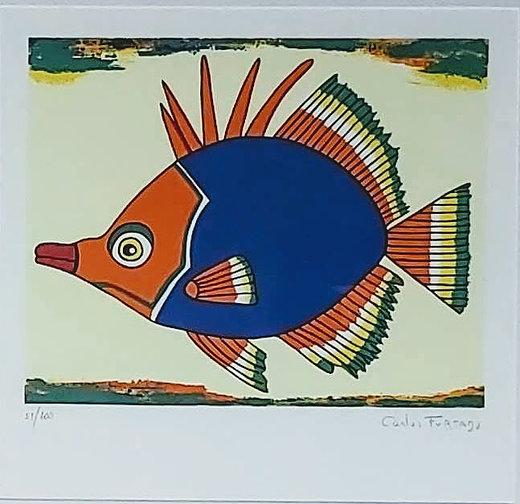 Carlos Furtado - Peixe VIII