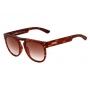 Óculos Evoke Ghost G21S Havana Matte
