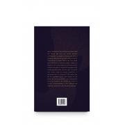 Livro Literatura à margem