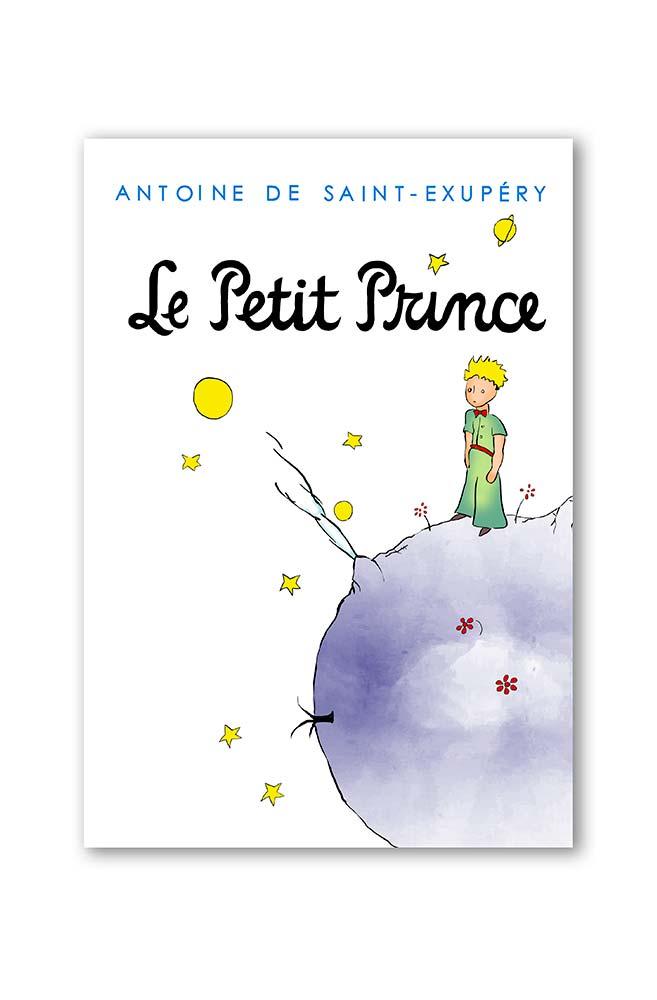 Camiseta infantil capa pequeno príncipe