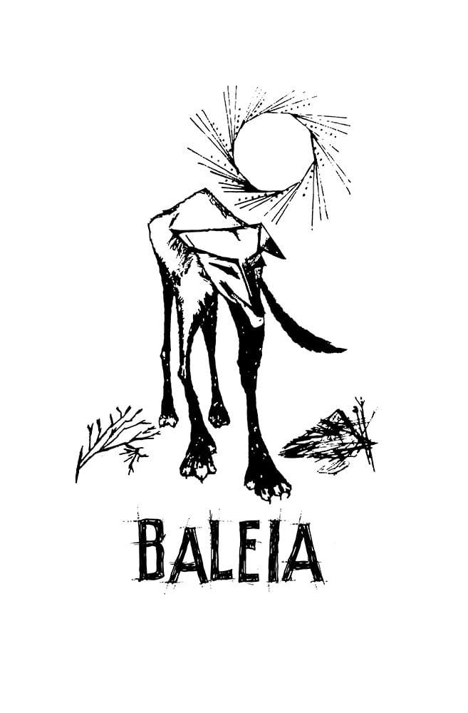 Quadro em MDF Baleia