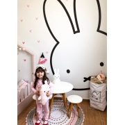 PAINEL FOTOGRÁFICO MIFFY