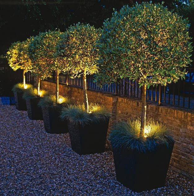 Lâmpada Espeto de Jardim Luminária LED Plana 9w - Luz do Dia  - Thata Esportes