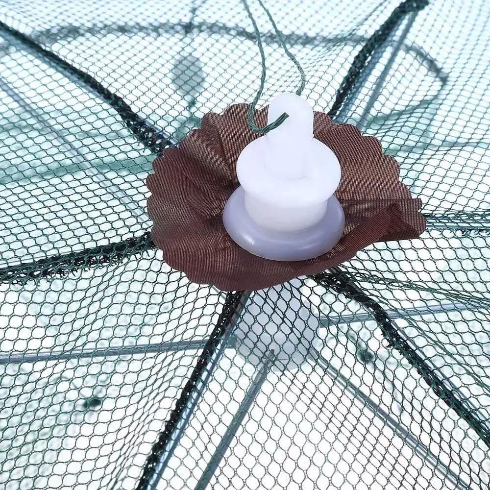 Armadilha de Peixes 6 Furos Pesca Pescaria Isca Lambari Tilápia  - Mundo Thata